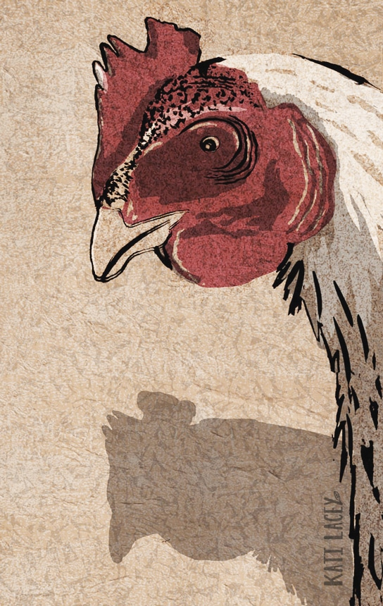 chicken-illustration-drawing-kati-lacey-animal-animalillustration-chickenillustration-farmyard-farm-farming-meat-kati-lacey-meatinthemiddle-eat-less-meat-campaign-more-vegetables-split-earth-planet-farmyard-animal-cow-pig-sheep-poster