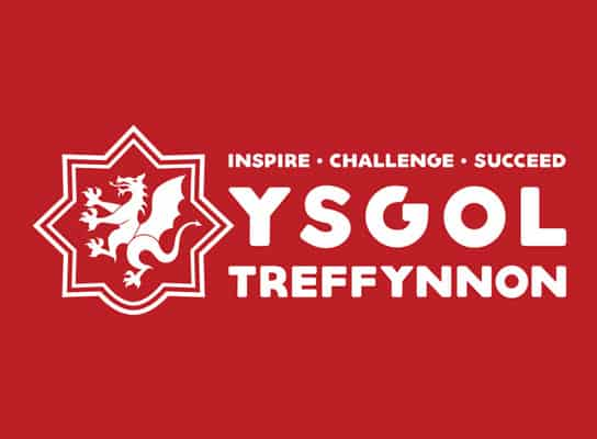 logo-design-treffynnon-ysgol-school-secondary-dragon-illustration-shape-well
