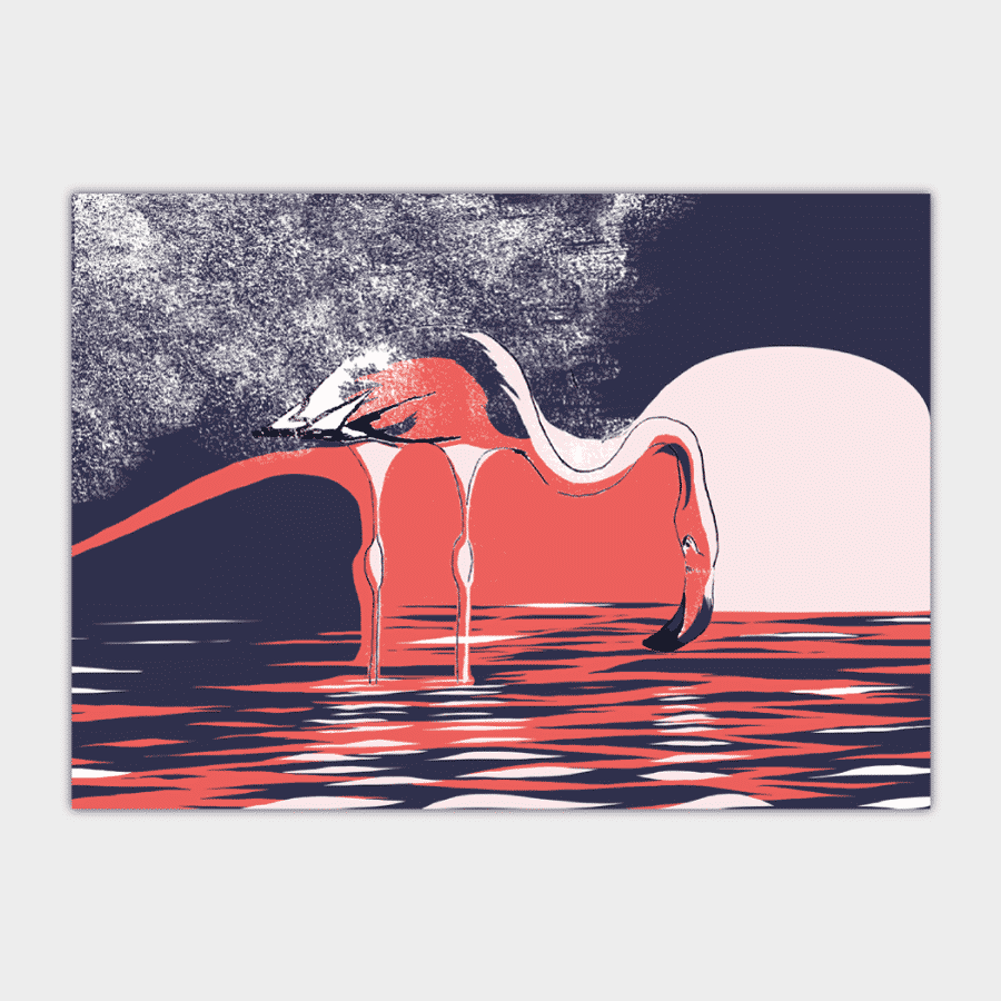 kati-lacey-editorial-illustration-magazine-solo travel-single-flamingo-water-purple-pink-biro-animalillustration-illustration-wildlife-illustrtor