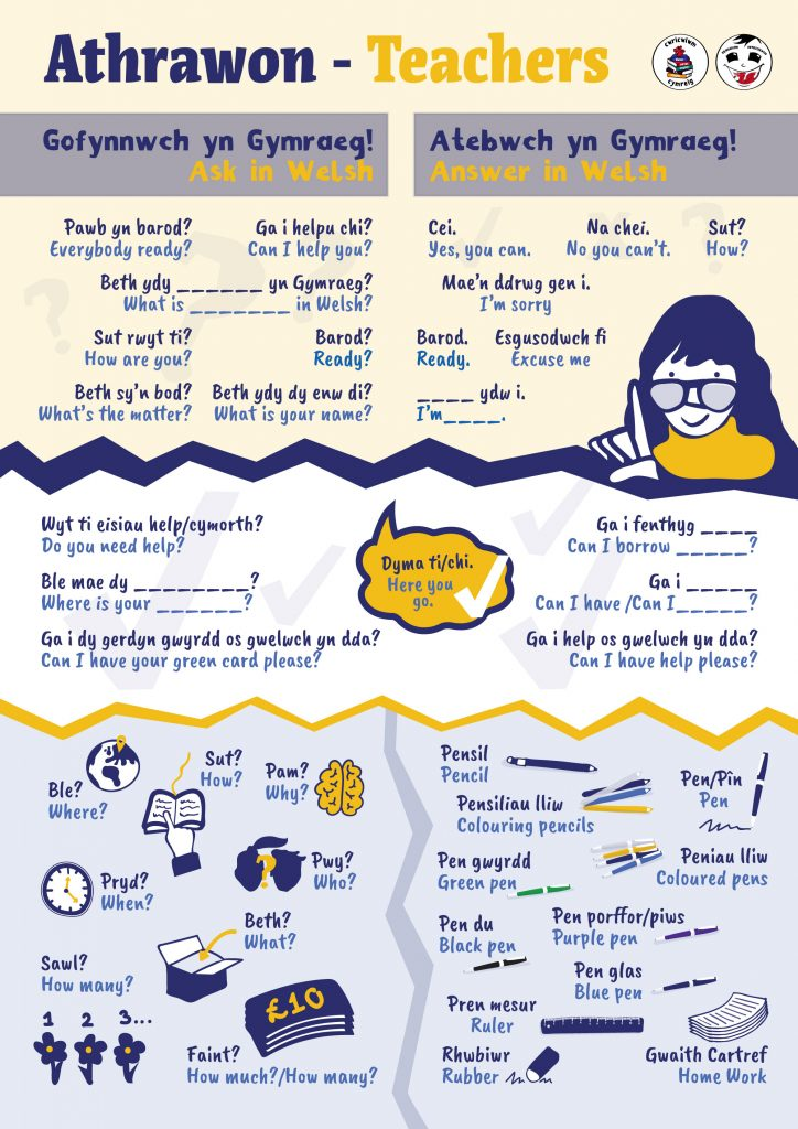 language poster-everyday language-poster for everyday use-daily phrases-illustrated poster design